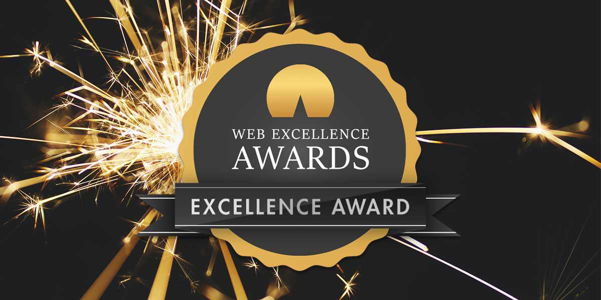 Stand Out Get Notices Ltd wins Web Excellence Awards